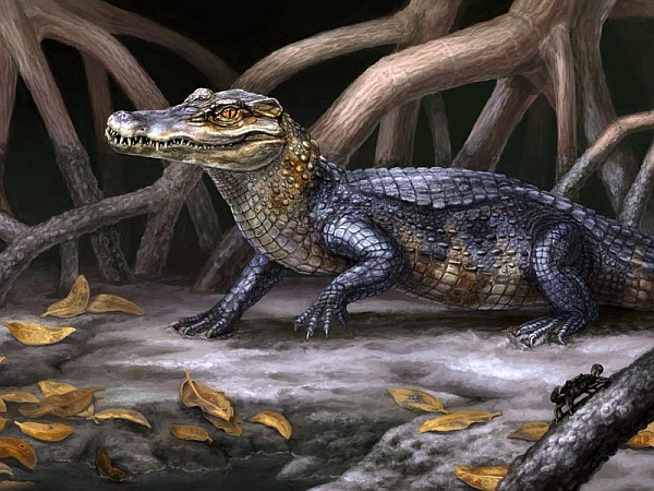 Culebrasuchus mesoamericanus (изображение Danielle Byerley / Florida Museum of Natural History).